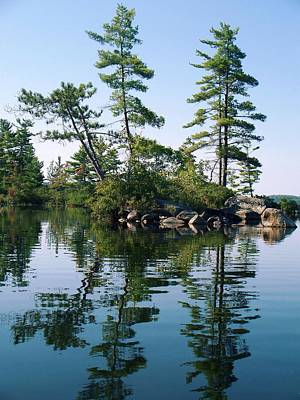 Little Rocky Pine Tree Island On Parker Pond Poster by Joy Nichols