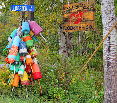 Lobster Buoys Poster by Jack Schultz