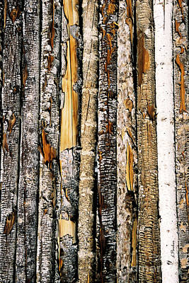 Log Fence - 3 Poster by Linda  Parker