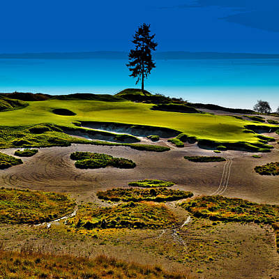 Lone Fir - Hole #15 At Chambers Bay Poster by David Patterson