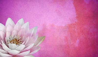 Lotus Poster by Mark Rogan