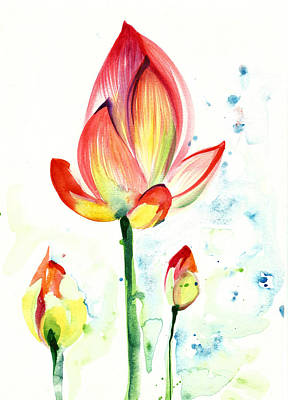 Lotus Opening Flower With Buds Poster by Tiberiu Soos