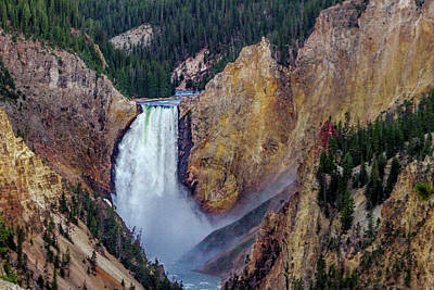 Lower Yellowstone Falls II Poster by Bill Gallagher