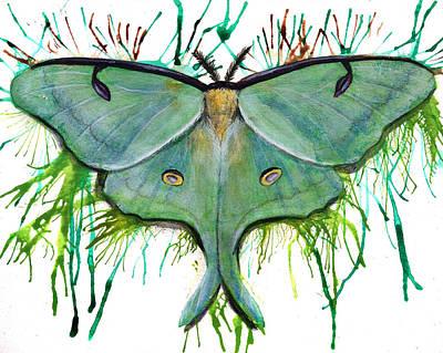 Luna Moth Poster by Danielle Trudeau
