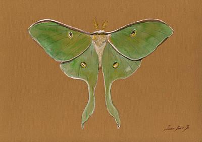 Luna Moth Poster by Juan Bosco