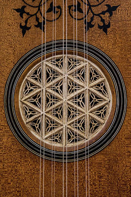 Lute Soundhole Poster by Thomas Morris