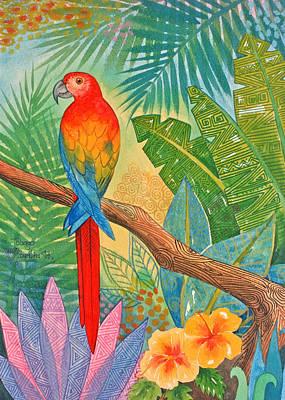 Macaw Poster by Jennifer Baird