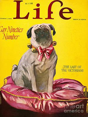 Magazine: Life, 1926 Poster by Granger