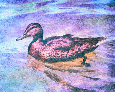 Mallard Duck Art Poster by Priya Ghose