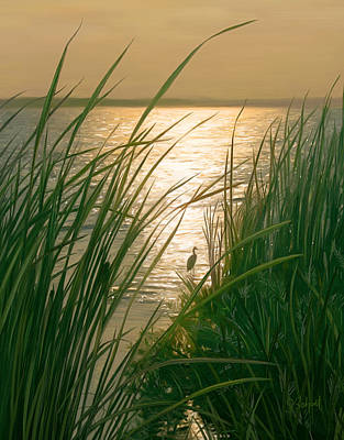 Marsh Sunset Poster by Sue  Brehant