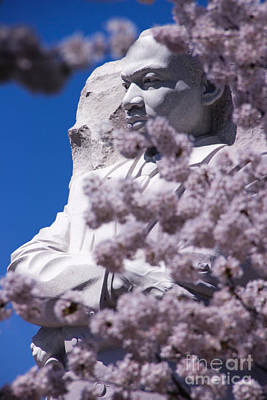 Martin Luther King Jr. Through The Flowers Poster by Amy Sorvillo