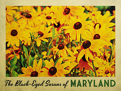 Maryland Black-eyed Susans Poster by Flo Karp