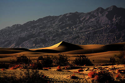 Mesquite Flat Sand Dunes Death Valley - Spectacularly Abstract Poster by Christine Till