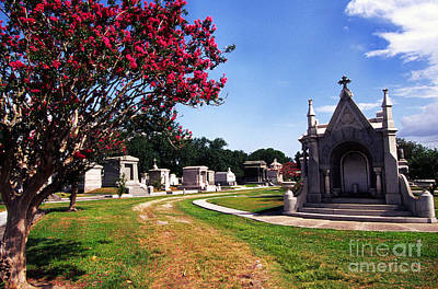 Metairie Cemetery New Orleans Poster by Thomas R Fletcher