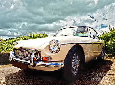 Mg Hdr Poster by Terri Waters
