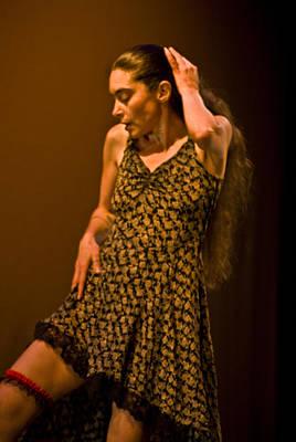 Modern Dance 16 Poster by Catherine Sobredo