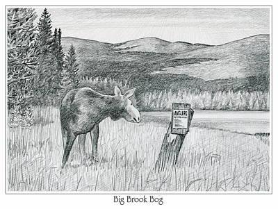 Moose At Big Brook Bog Poster by Harry Moulton