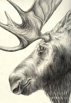 Moose Poster by Aurora Jenson