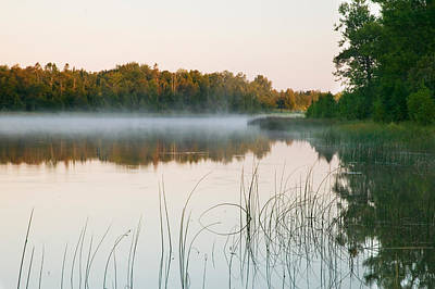 Morning Mist Over Mink River Estuary Poster by Panoramic Images