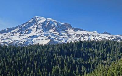 Mount Rainier In Spring Poster by Dan Sproul