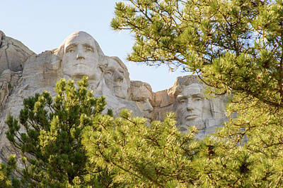 Mount Rushmore Framed With Trees 2 Poster by AMB Fine Art Photography