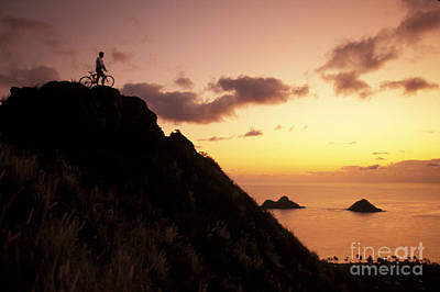 Mountain Bikers On Oahu Poster by Dana Edmunds - Printscapes