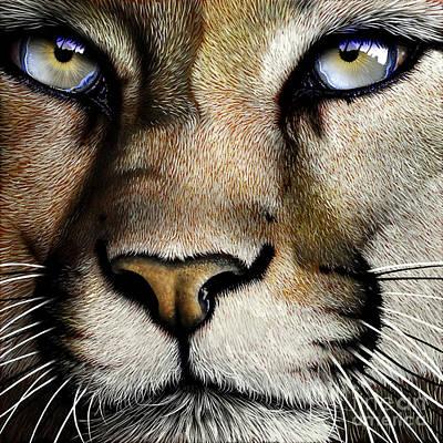 Mountain Lion Poster by Jurek Zamoyski