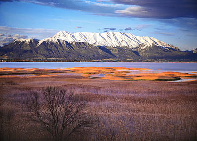 Mt. Timpanogos And Utah Lake Poster by Utah Images