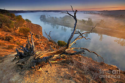 Murray River Dawn Poster by Bill  Robinson