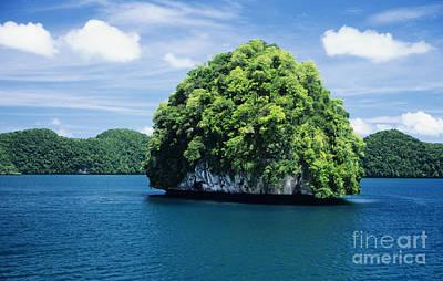 Mushroom-shaped Island Poster by Dave Fleetham - Printscapes