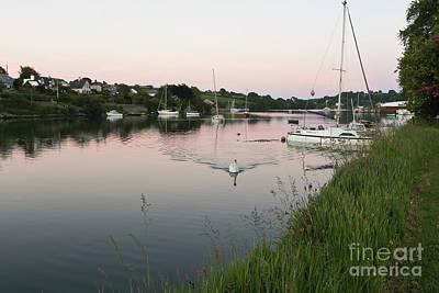 Mylor Bridge Swan At Sunset Poster by Terri Waters