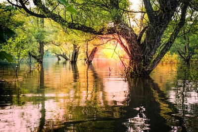 Mystical River Poster by Debra and Dave Vanderlaan