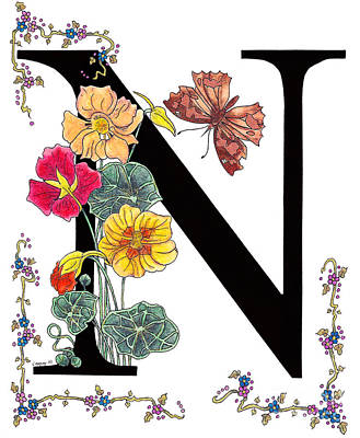 Nasturtium And Nettle-tree Butterfly Poster by Stanza Widen