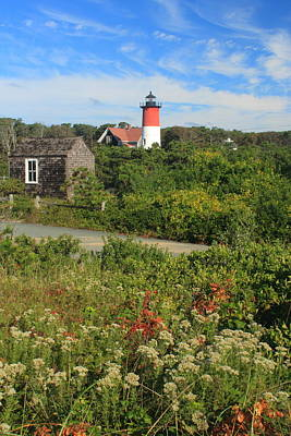 Nauset Lighthouse Late Summer Flowers Poster by John Burk