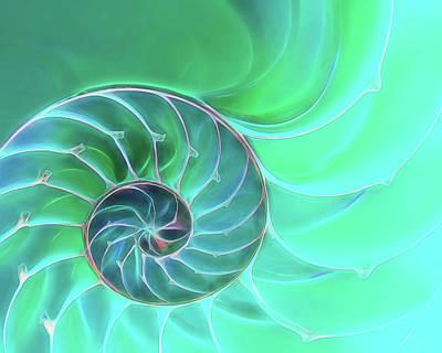Nautilus Aqua Spiral Poster by Gill Billington