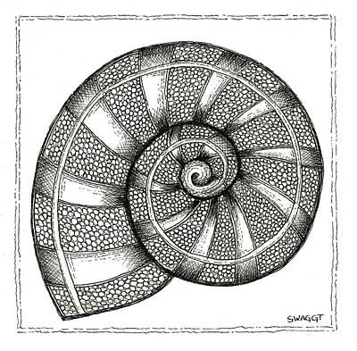 Nautilus Poster by Stephanie Troxell