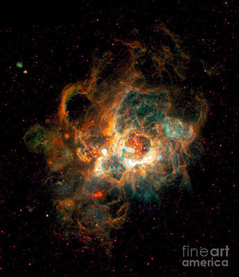 Nebula In Galaxy M33 Poster by Space Telescope Science Institute  NASA