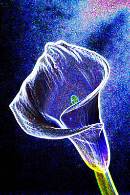 neon Calla lilly Poster by Gary Brandes