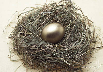 Nest With Golden Egg Poster by Gerard Lacz