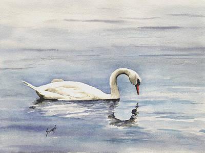 Nymphenburg Swan Poster by Sam Sidders