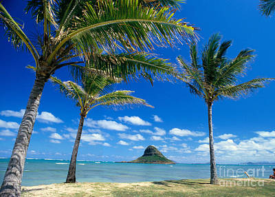 Oahu, Mokolii Island Poster by Peter French - Printscapes
