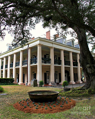 Oak Alley Plantation Poster by Perry Webster
