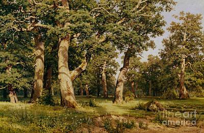 Oak Grove Poster by Ivan Ivanovich Shishkin