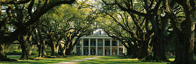Oak Trees In Front Of A Mansion, Oak Poster by Panoramic Images