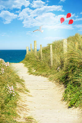 Ocean Path In Cornwall Poster by Amanda Elwell