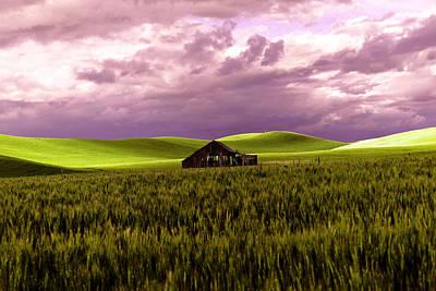 Old Barn In A Pa-louse Wheat Field  Poster by Jeff Swan