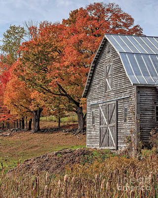 Old Barn With New England Foliage Poster by Edward Fielding