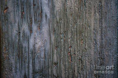 Old Cracked Wood Background Poster by Elena Elisseeva