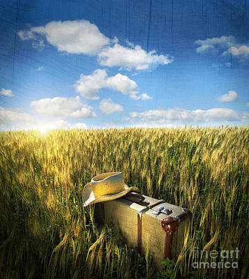 Old Suitcase With Straw Hat In Field Poster by Sandra Cunningham