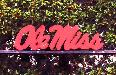 Ole Miss Magnolias Poster by JC Findley